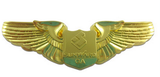 wing lapel pin